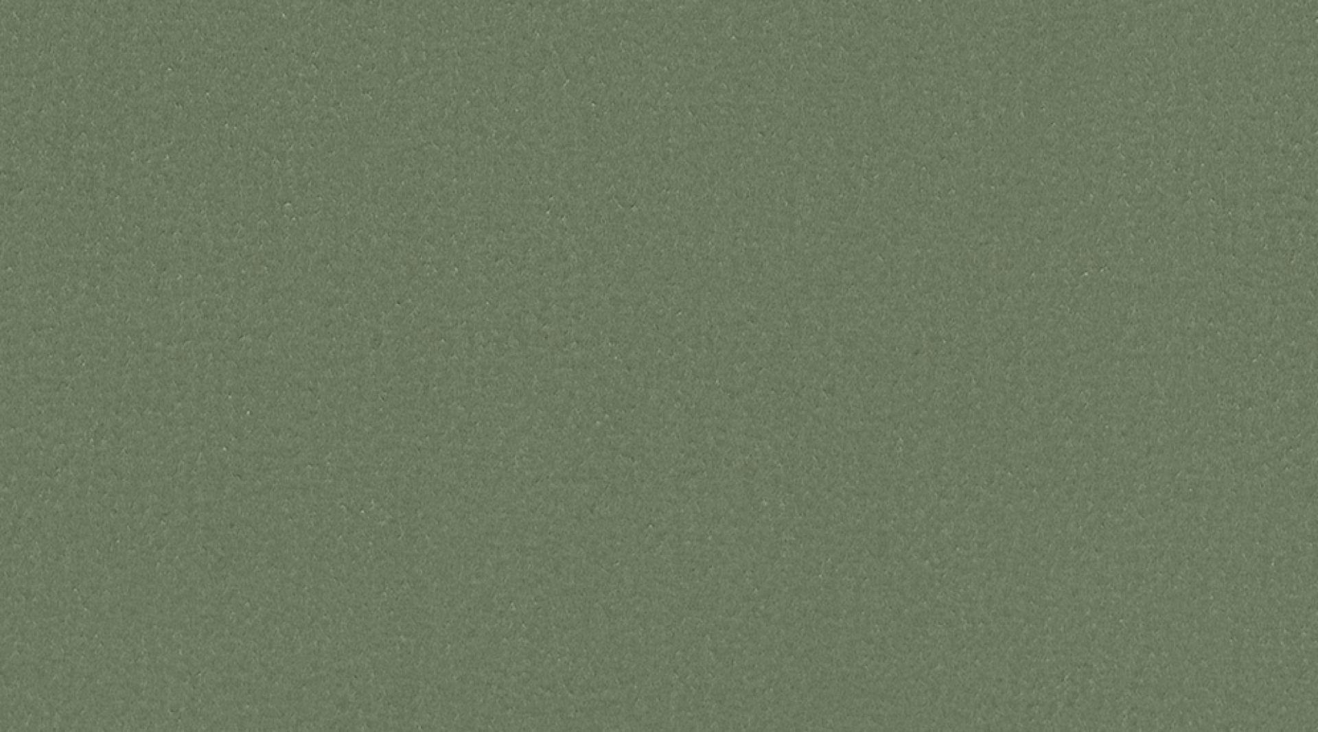 0842 olive